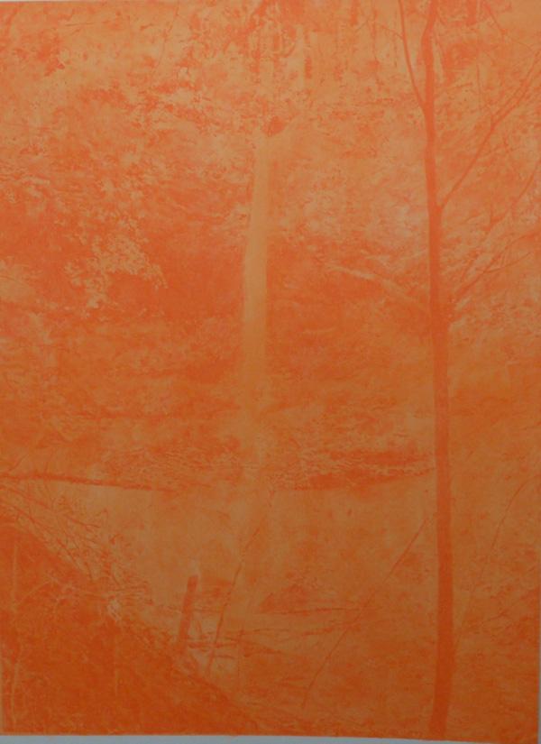 wald_orange_OHNE TITEL 175x125cm
